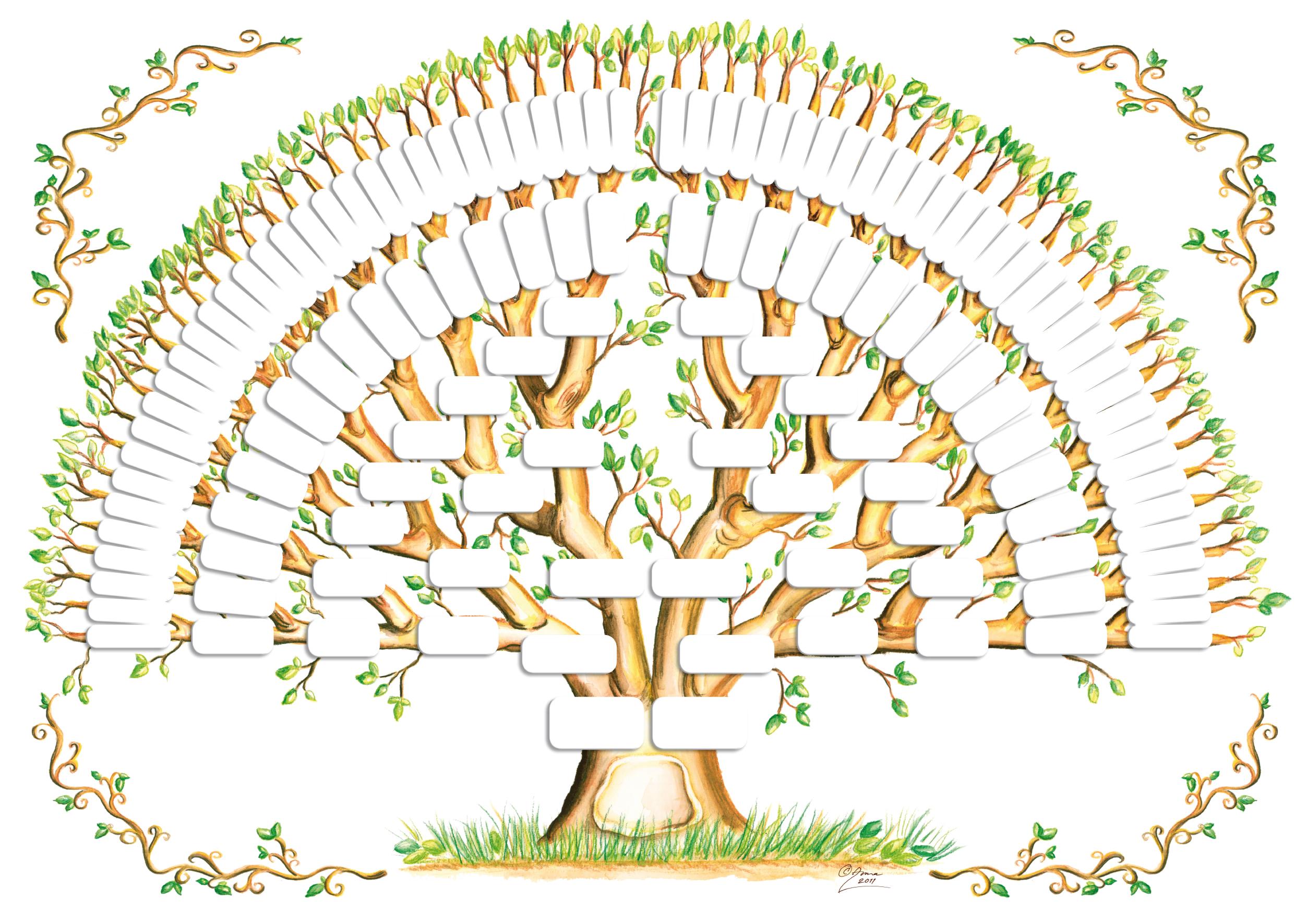 7 Generation Family Tree Template Kubreforic